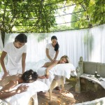 Conferencing and Spas in South Africa