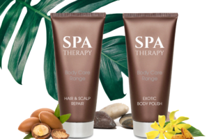 Spa Therapy – A Sense of Well-being