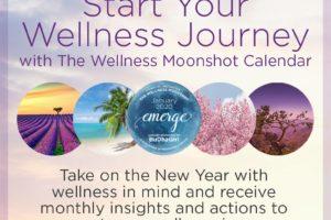 The Global Wellness Institute's Wellness Moonshot Initiative 2020